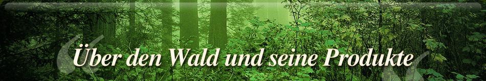 banner-index-1-ger.jpg