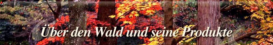 banner-index-3-ger.jpg