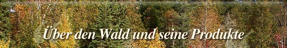 banner-index-5-ger.jpg